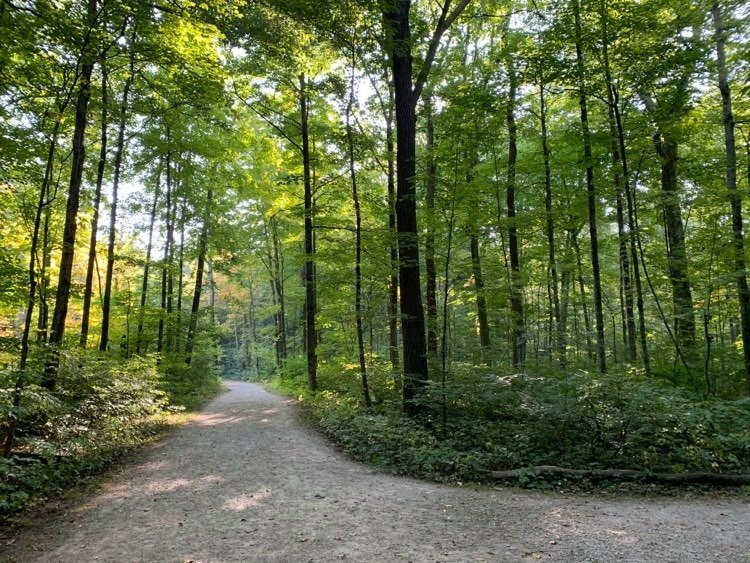 family friendly nature trails